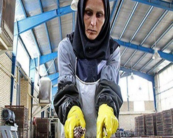زنان کارگر و دستورالعمل ممنوعیت اخراج آنها